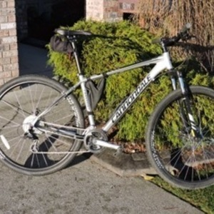 2013 Cannondale Trail 29 6