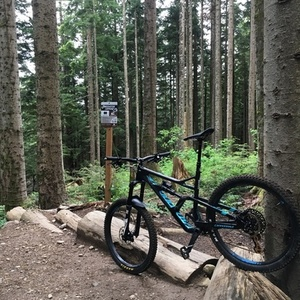 2018 Cannondale Jekyll 1