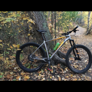 2017 Specialized Fuse