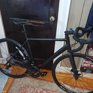 2018 Canyon bicycles Endurace AL