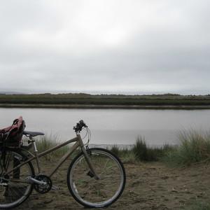 2008 Trek