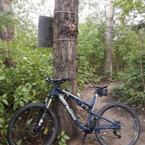 2017 Rocky Mountain Bicycles Thunderbolt