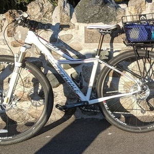 2014 Cannondale Tango 29 5