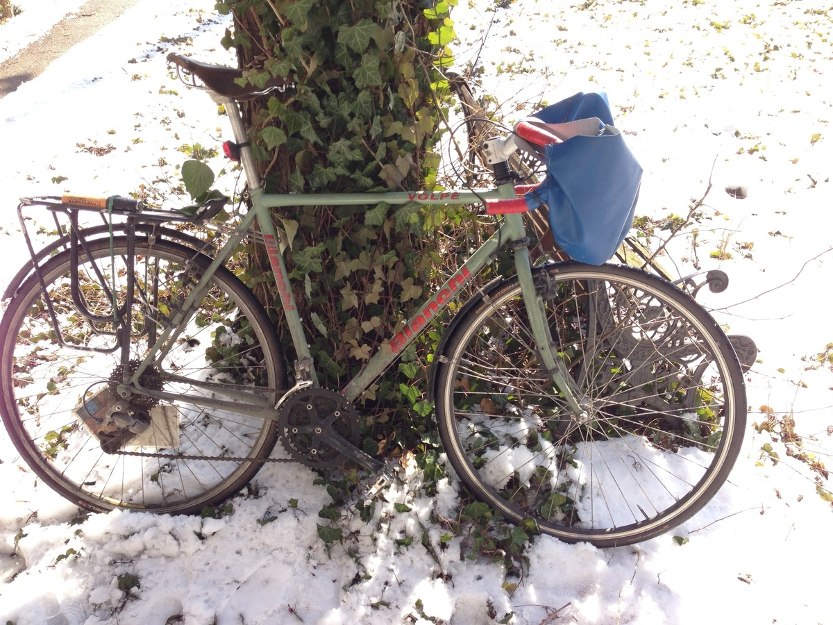 Unique snowflake bike