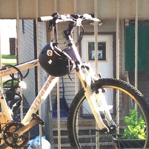 2009 Trek 4300 WSD