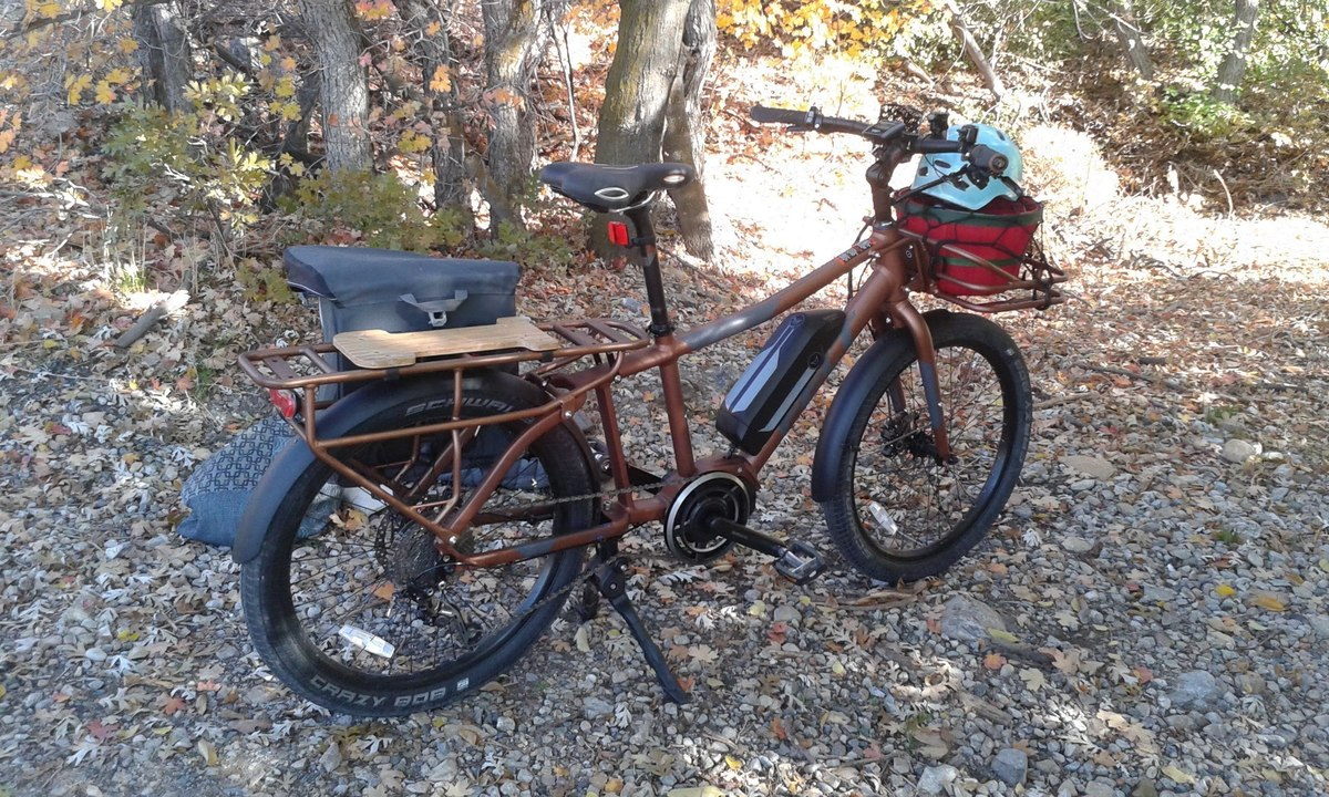 Cargo Bike (Rear Storage) photo