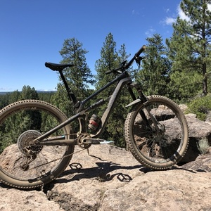 2018 Canyon bicycles Spectral