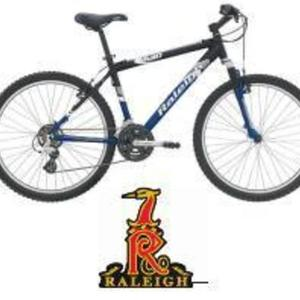 2004 Raleigh M40