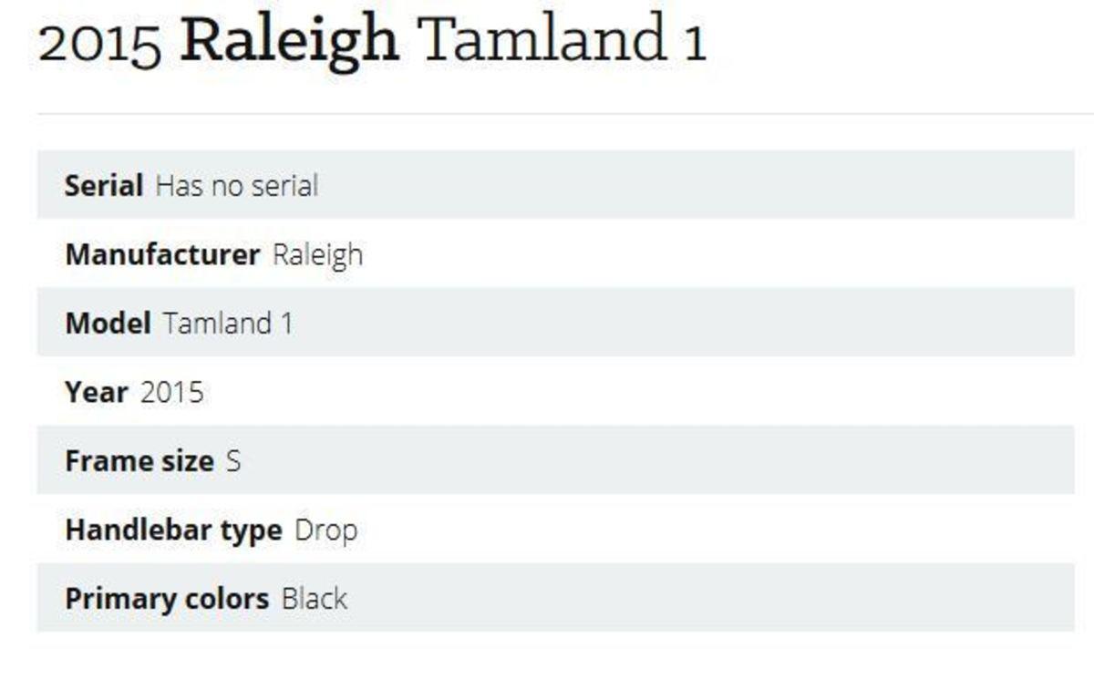2015 Raleigh Tamland 1