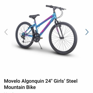 2020 Huffy Movelo Algonquin Blue and Pink