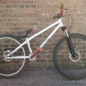 Doberman Pinscher bicycle White