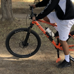 2019 Giant Talon 2