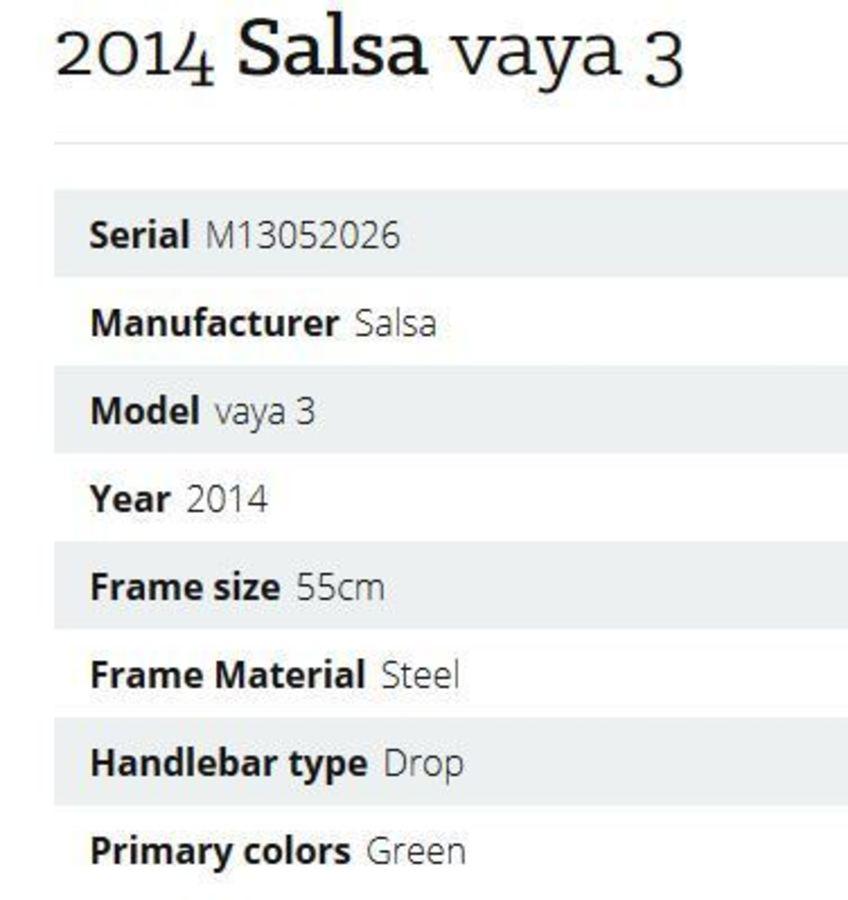 2014 Salsa Vaya 3