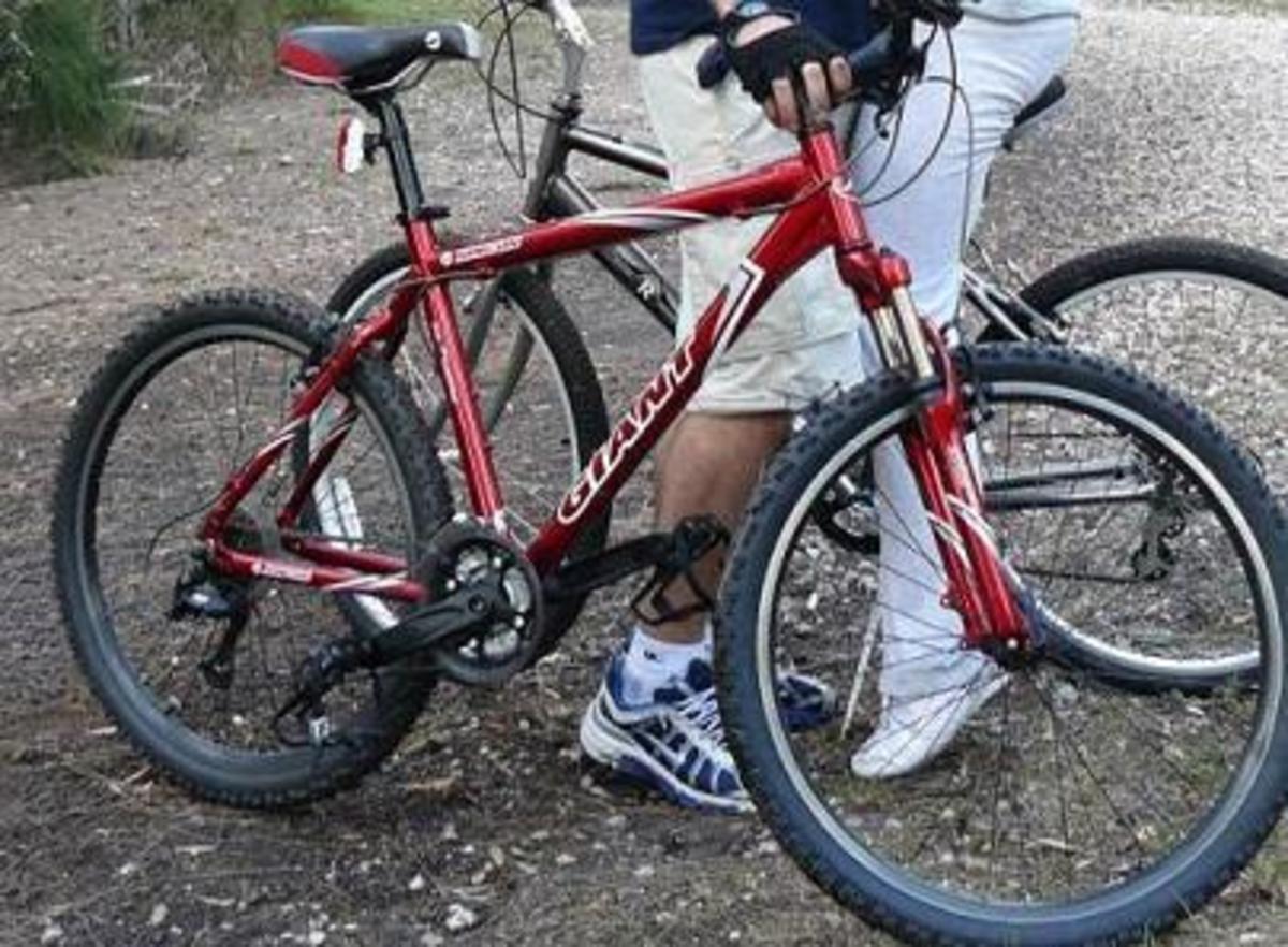 Stolen 2004 Giant Rincon 20 5