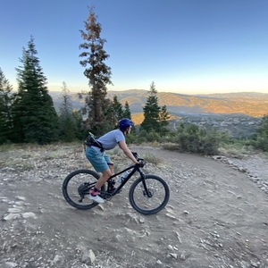 2019 Trek Fuel EX 8