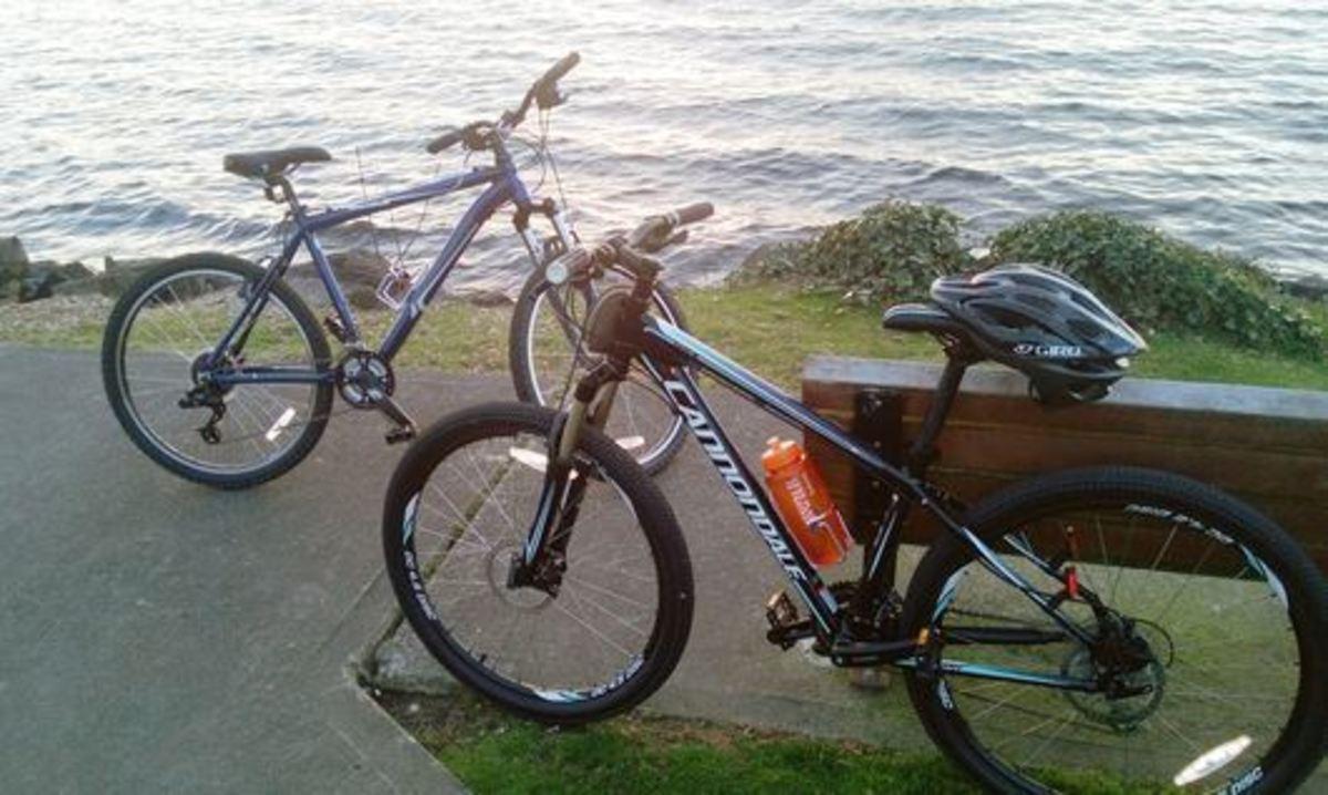 2012 Novara Portal Mtn Bike