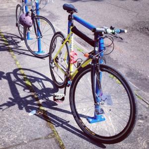 Stolen 2004 Carrera bicycles Cyclocross