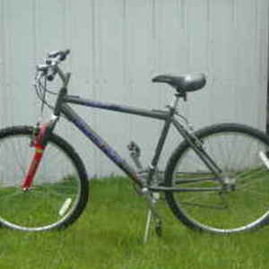 2001 Raleigh M30