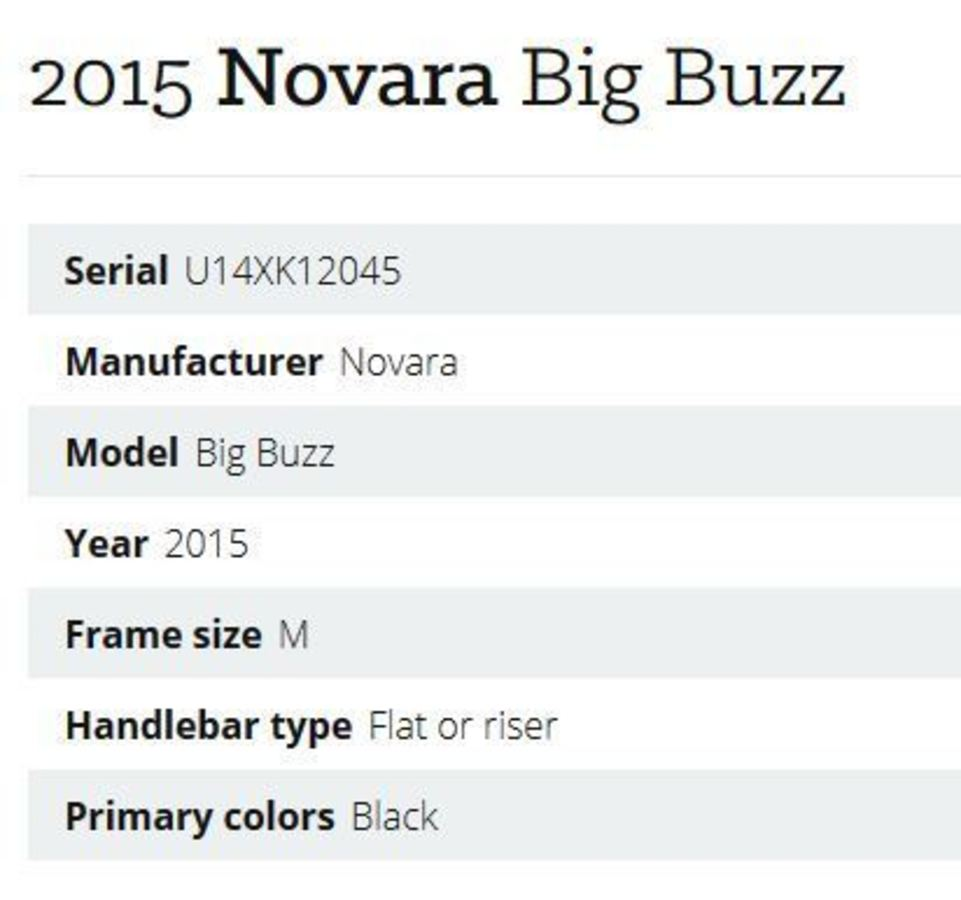 2015 Novara Big Buzz