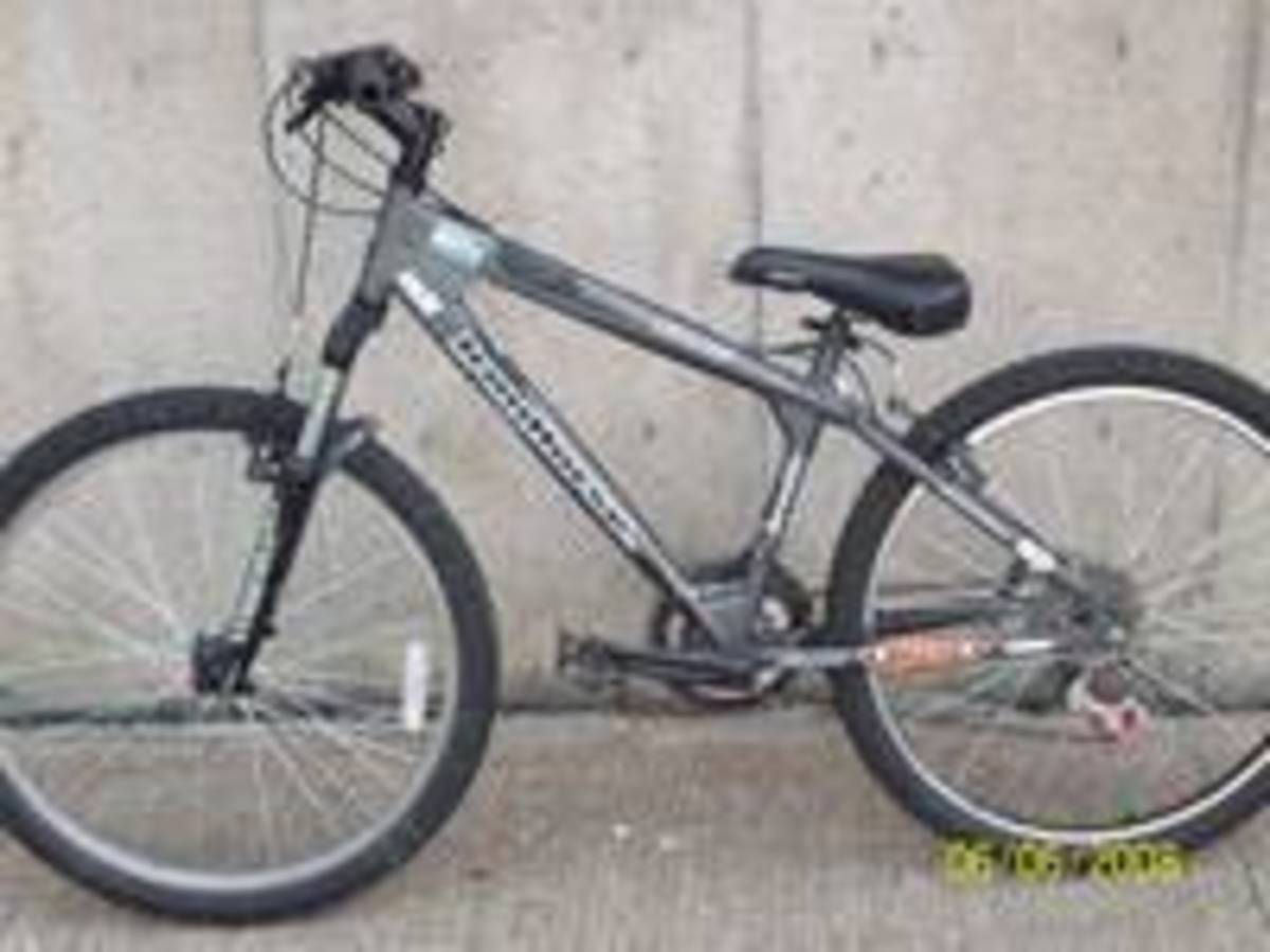 Stolen 2004 Iron Horse Bicycles Sonic