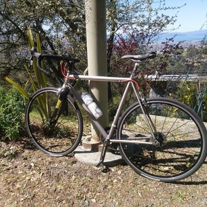 1987 Litespeed unknown Silver, gray or bare metal