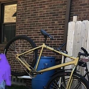 2010 Nashbar Single Speed Mountain Bike