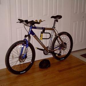 2006 Trek 4300
