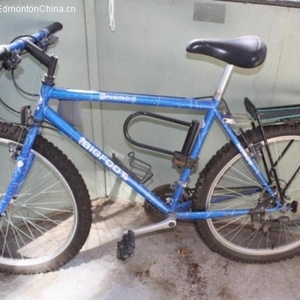 Bigfoot Mountain Bike